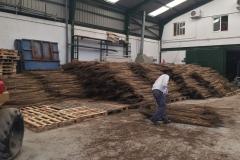 Almacen para la venta de manojos de junco africano