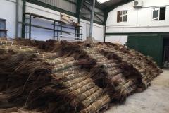 Almacen para comprar manojos de junco africano