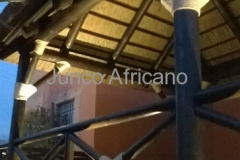 Union con Cuerda Decorativa Pergola Granada