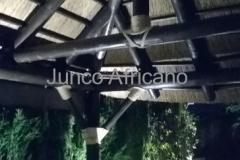 Cercha Pergola de Junco Africano Granada