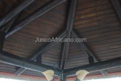 Cubierta Junco Africano