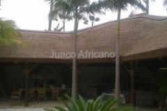Detalle de Pergola de Junco Africano Los Monteros