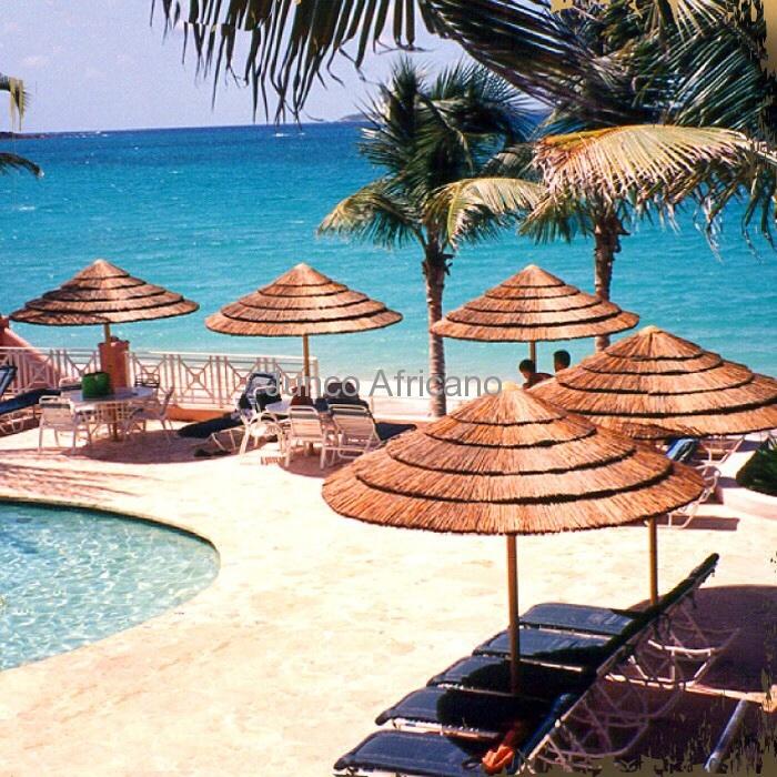 Sombrillas junco africano junco africano 622 592 448 for Sombrillas para piscinas